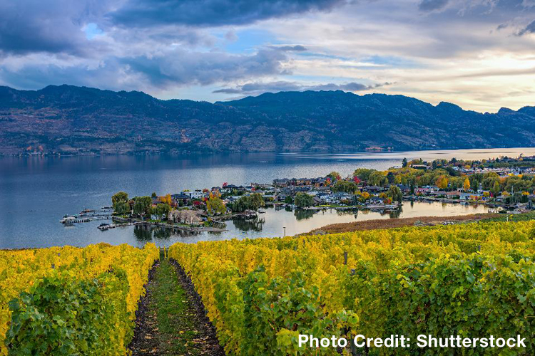 The Thundering Increase In Okanagan Valley Wines